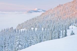 winter alpenglow along the Puyallup Ridge Trail, Mount Tahoma Tr